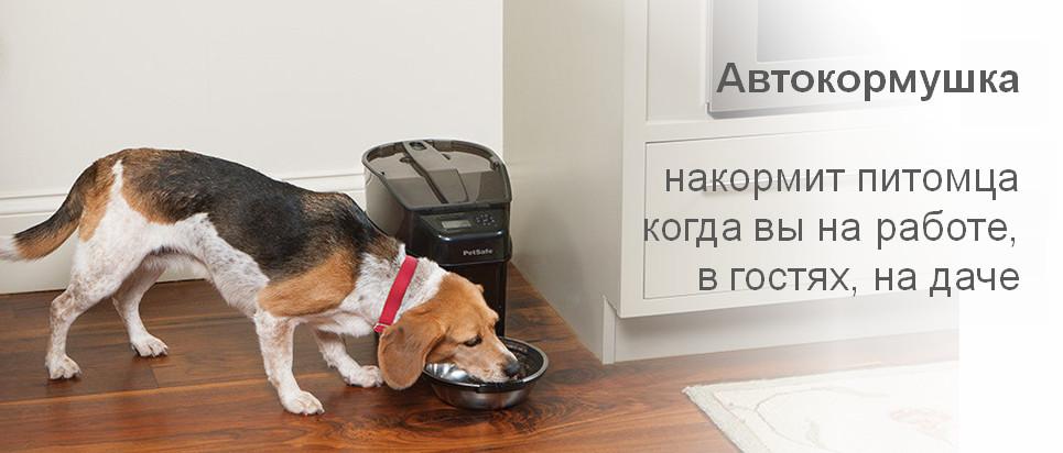 Каталог автокормушек для кошек и собак
