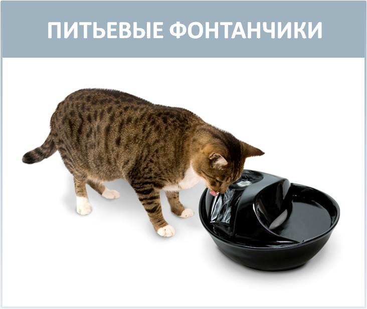 Каталог поилок для кошек и собак