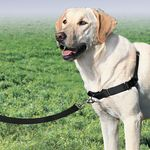 Корректирующая шлейка PetSafe Easy Walk Harness