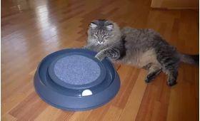 Игрушка для кошки Happy Cat Погоняй мячик I.P.T.S 440405