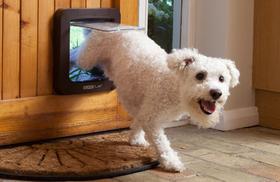 Дверца для собаки SureFlap с замком