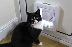 Дверца для кошки с электронным замком