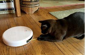 Автоматическая игрушка дразнилка для кошек FroliCat FLIK