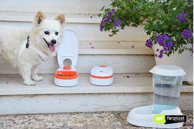 кормушка Ferplast Cometa для кошек и собак живое фото