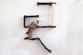 Игровой настенный комплек для кошек Форт ModernCat орех