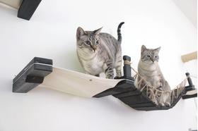 Игровой настенный комплек для кошек Лаундж ModernCat левая часть