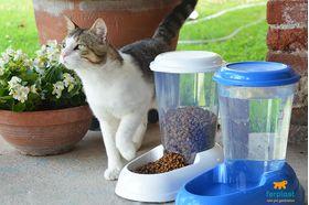 Поилка для кошек и собак Ferplast NADIR 3 л живое фото