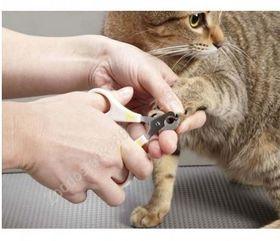 Когтерез для кошек и маленьких собак