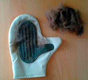 Варежка с натуральной резиной для вычесывания шерсти