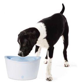 Поилка для собак и кошек Dogit Design Hagen 91400