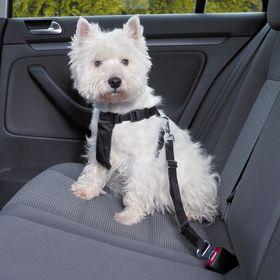 Автошлейка для собак Trixie
