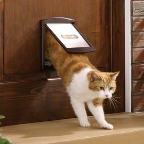 Дверца для кошек и собак Staywell Original 2 Way Small
