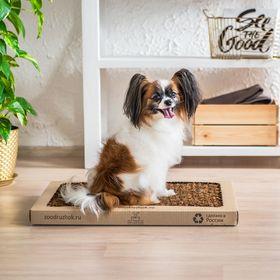 Лоток для собак с натуральным наполнителем Зоодружок