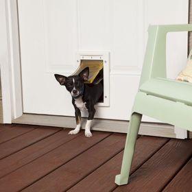 Утепленная дверь для кошек и собак PetSafe Extreme Weather размер S установленная